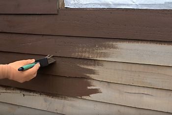 staining an exterior shed wall material